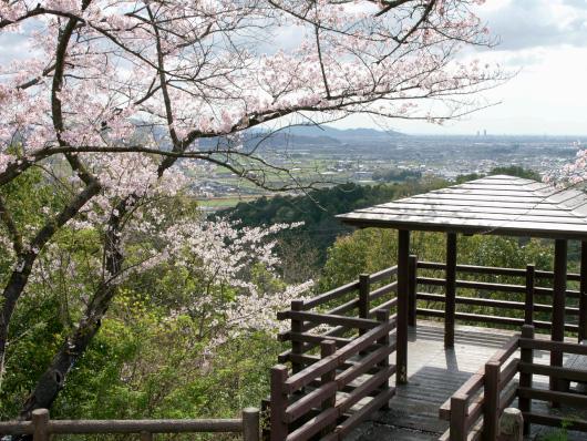 大谷スカイライン野村山展望台イメージ